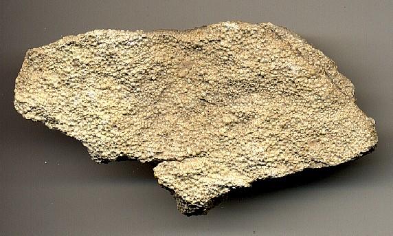 Jason s Geology Lab MidtermOolitic Limestone